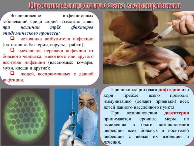 Как передаются и чем опасны зоонозные инфекции? методы лечения и профилактики