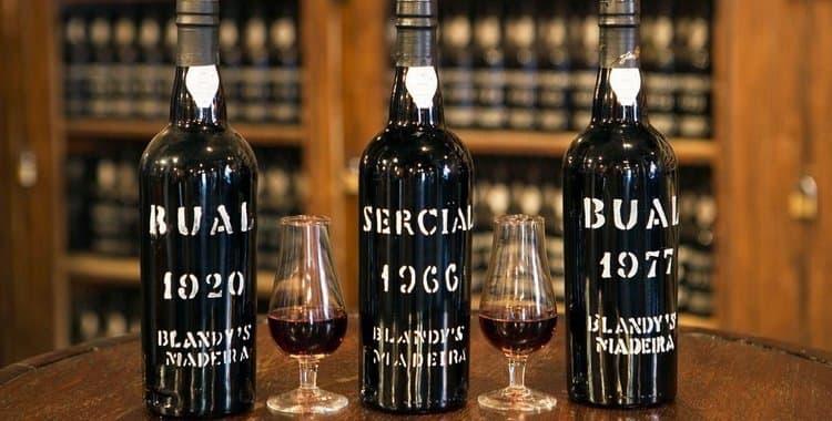 Вино мадера — история, описание, полезные свойства и вред
