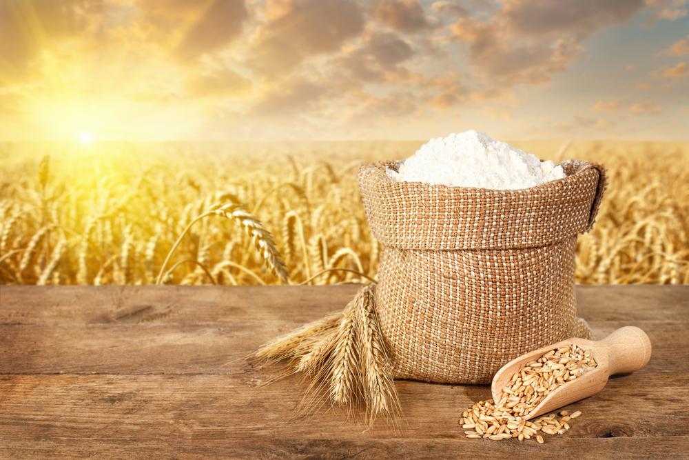 Что такое хлебная мука