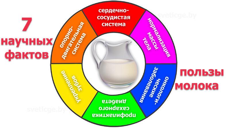 Сахар - виды, заменители сахара, польза и вред