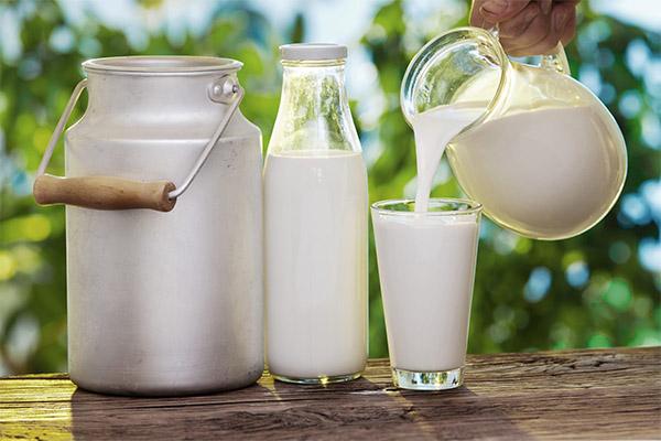 Топленое молоко: польза и вред, калорийность, рецепты с фото   zaslonovgrad.ru