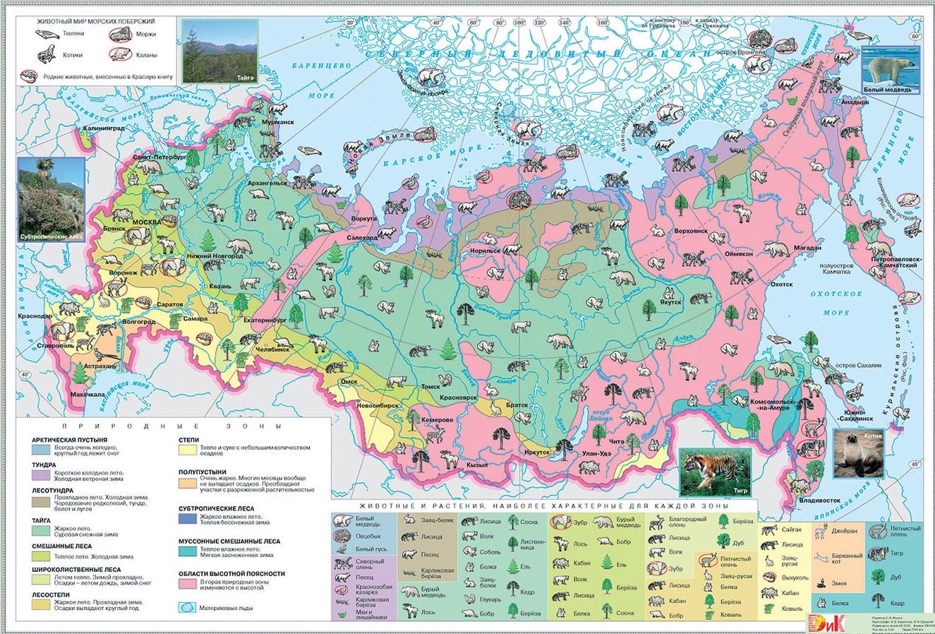 Природные условия и природные ресурсы: характеристика и особенности