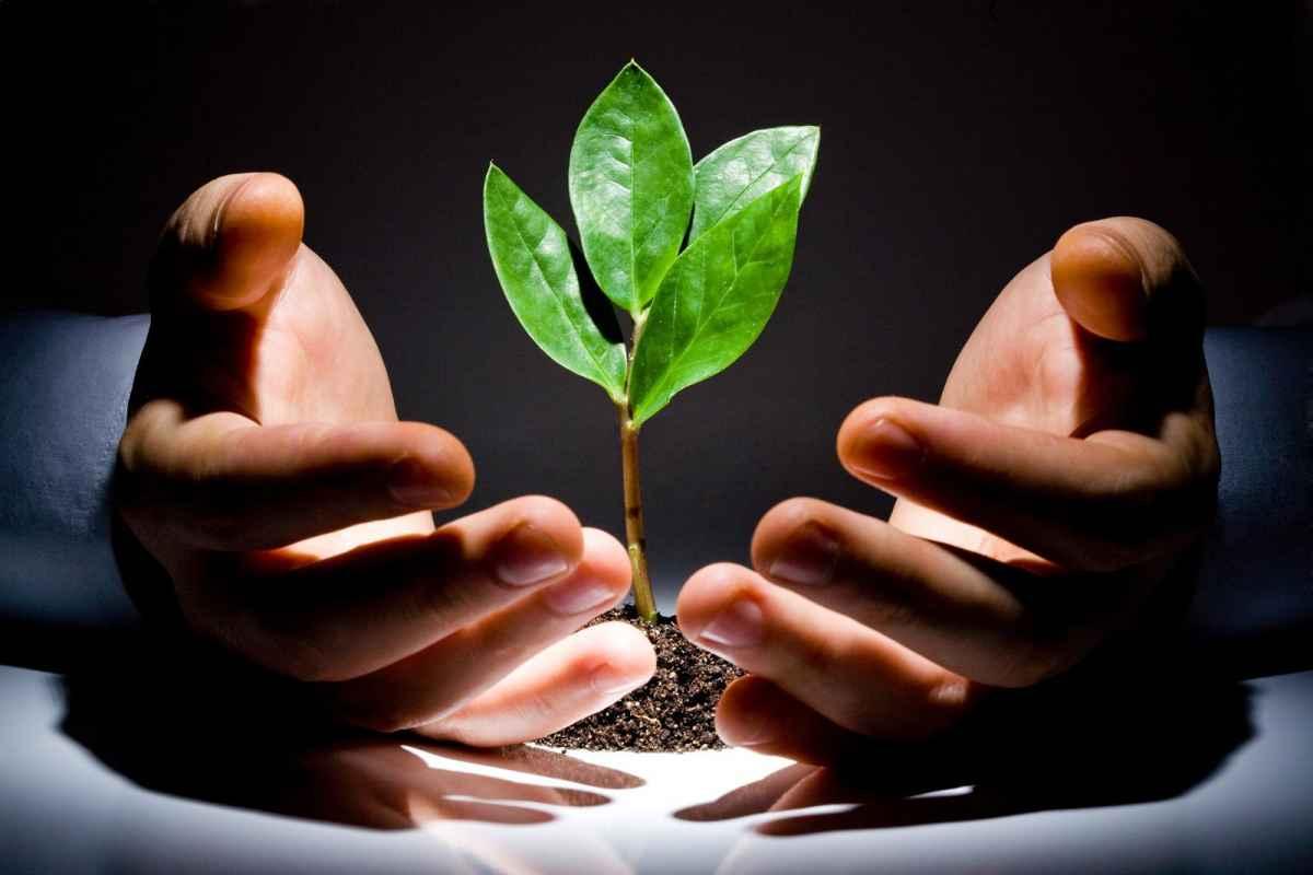 Процесс созидания – это улучшение и развитие общества