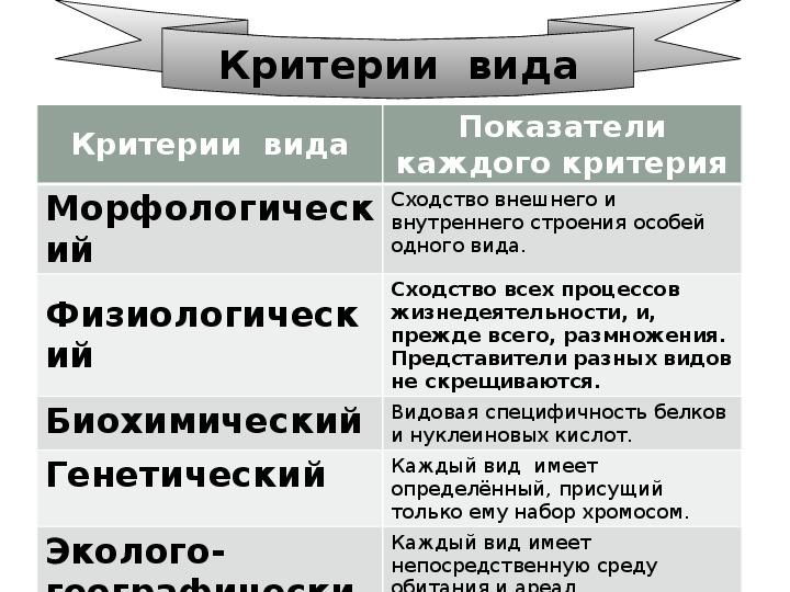 Вид и его критерии - сайт по биологии
