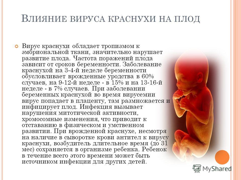Болезнь виллебранда — википедия