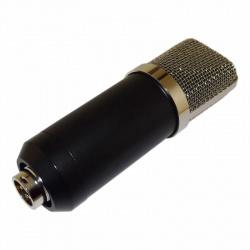Беспроводные микрофоны: как работают портативные дистанционные модели? профессиональные микрофоны с динамиком для публичных выступлений и другие модели