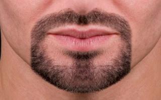 Козлиная бородка или эспаньолка – кому идет и как стричь. испанская бородка – атрибут героев и романтиков