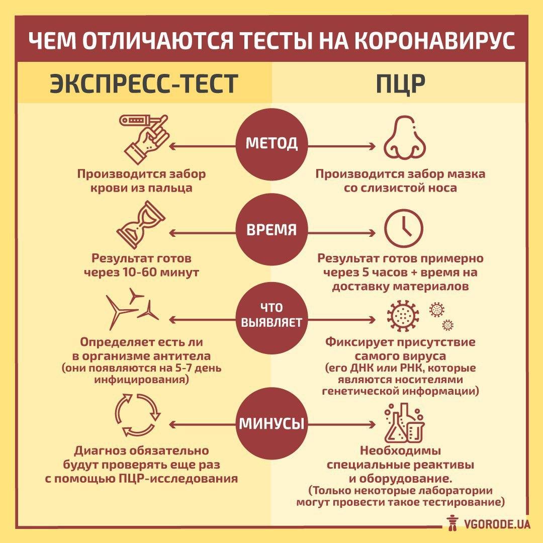 Тесты на коронавирус в россии: где пройти, сколько стоит?????