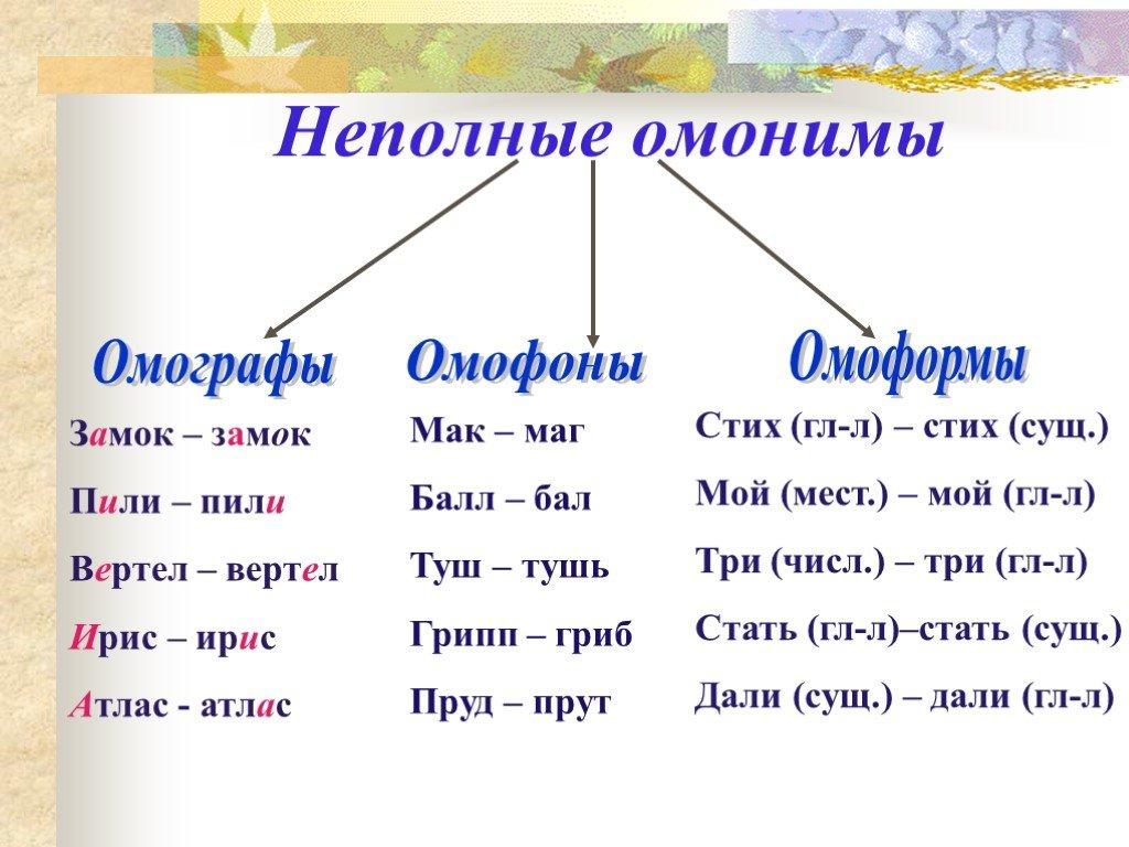 Что такое омонимы в русском языке - примеры