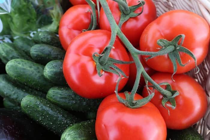 Лучшие удобрения для огурцов и помидоров: народные подкормки, проверенные рецепты, как получить хороший урожай