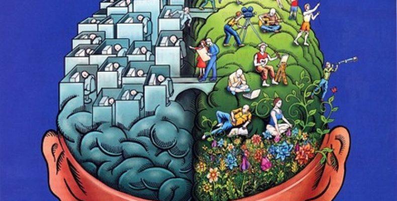 Что такое рациональность и как она проявляется? примеры и описание простыми словами