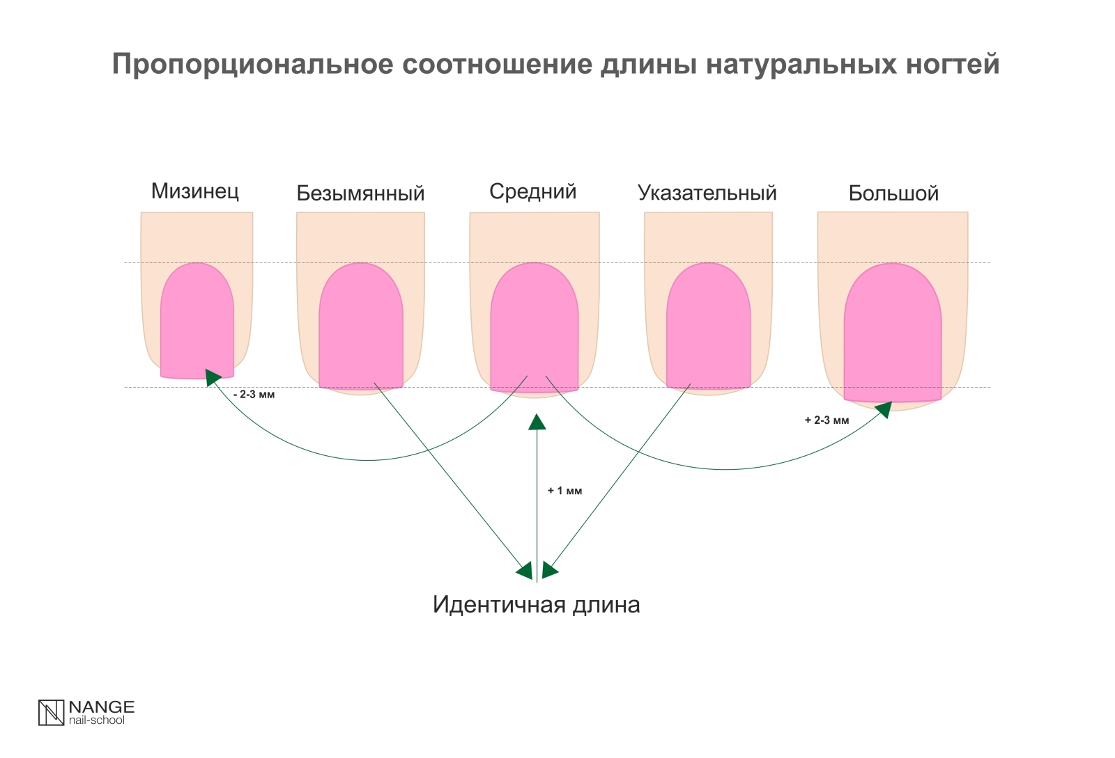 Как пишутся размеры длина ширина высота – габариты как правильно указывать