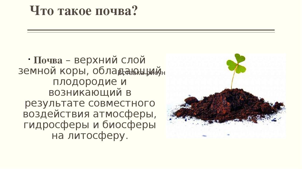 Почвы. география 5-6 класс. алексеев