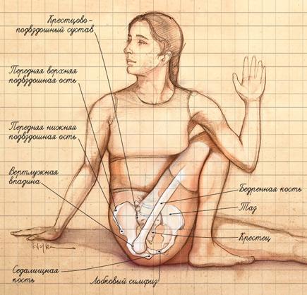 Боли в крестцовом отделе позвоночника у женщин отдает в низ живота