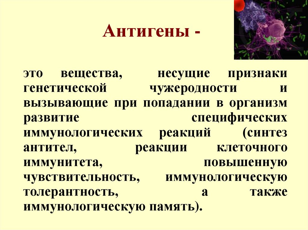 Понятия антиген и антитело: виды, функции | все о медицине