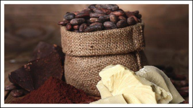 Что такое какао? история напитка. полезные свойства | cofete.ru