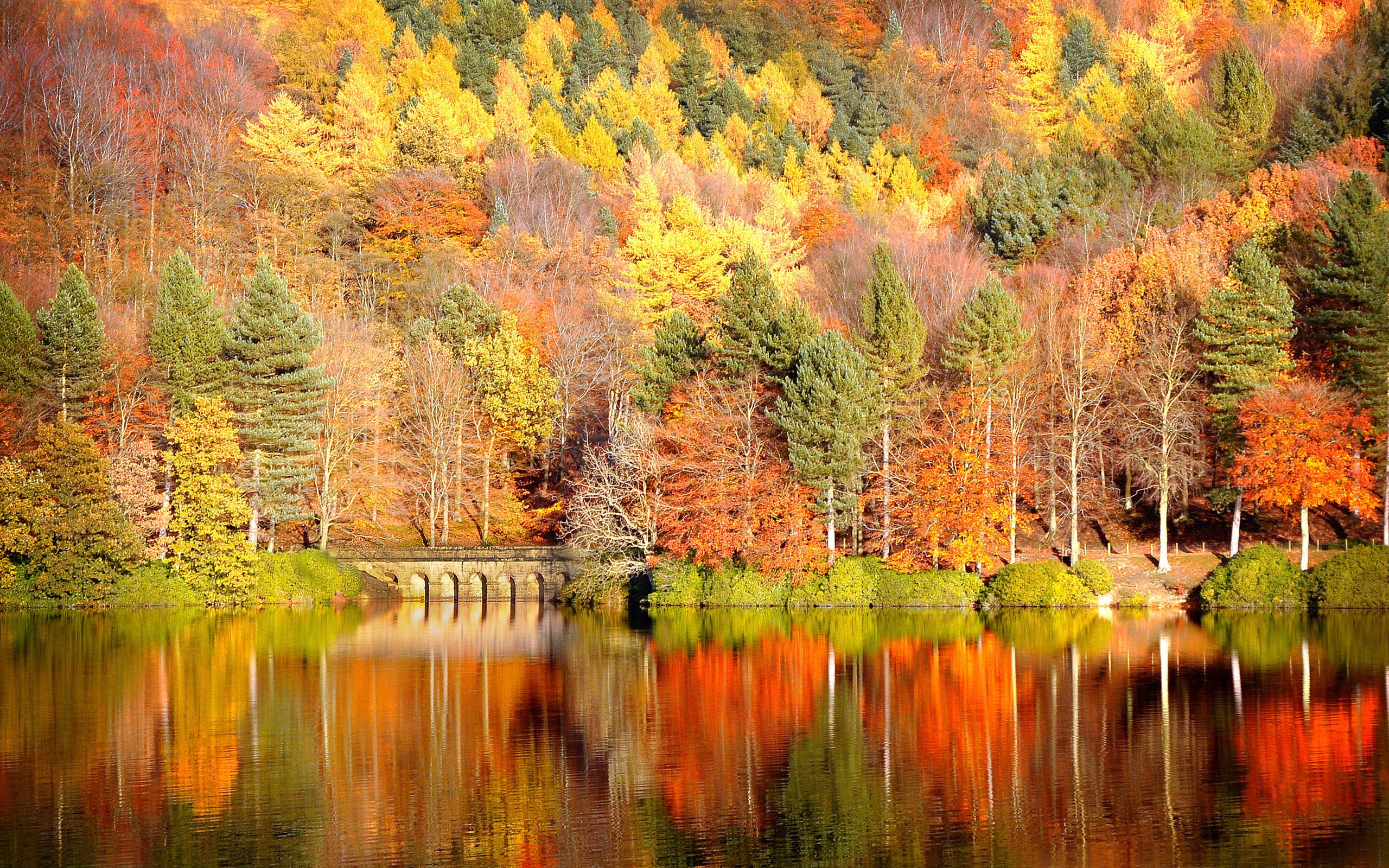 Что такое осень