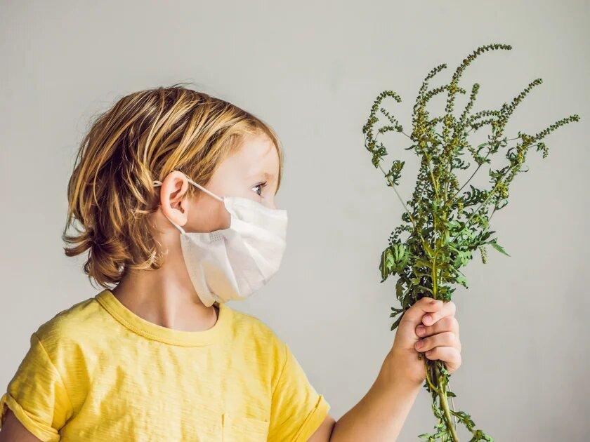 Поллиноз у детей и взрослых: симптомы, лечение и правила помощи больному при сенной лихорадке