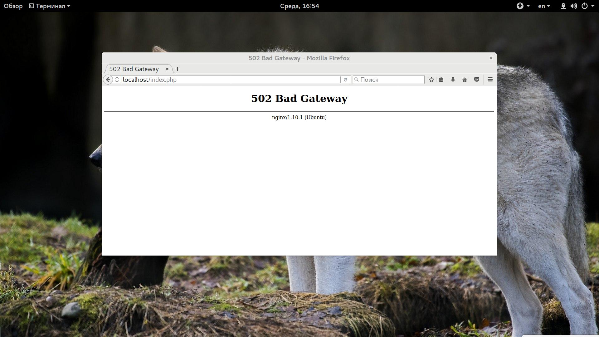 Ошибка 502 bad gateway в браузере – что это значит, как устранить