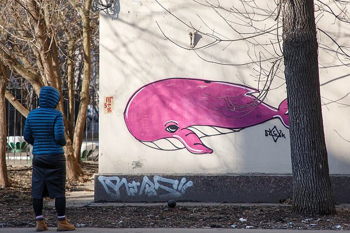 Синий кит - задания, которые убивают