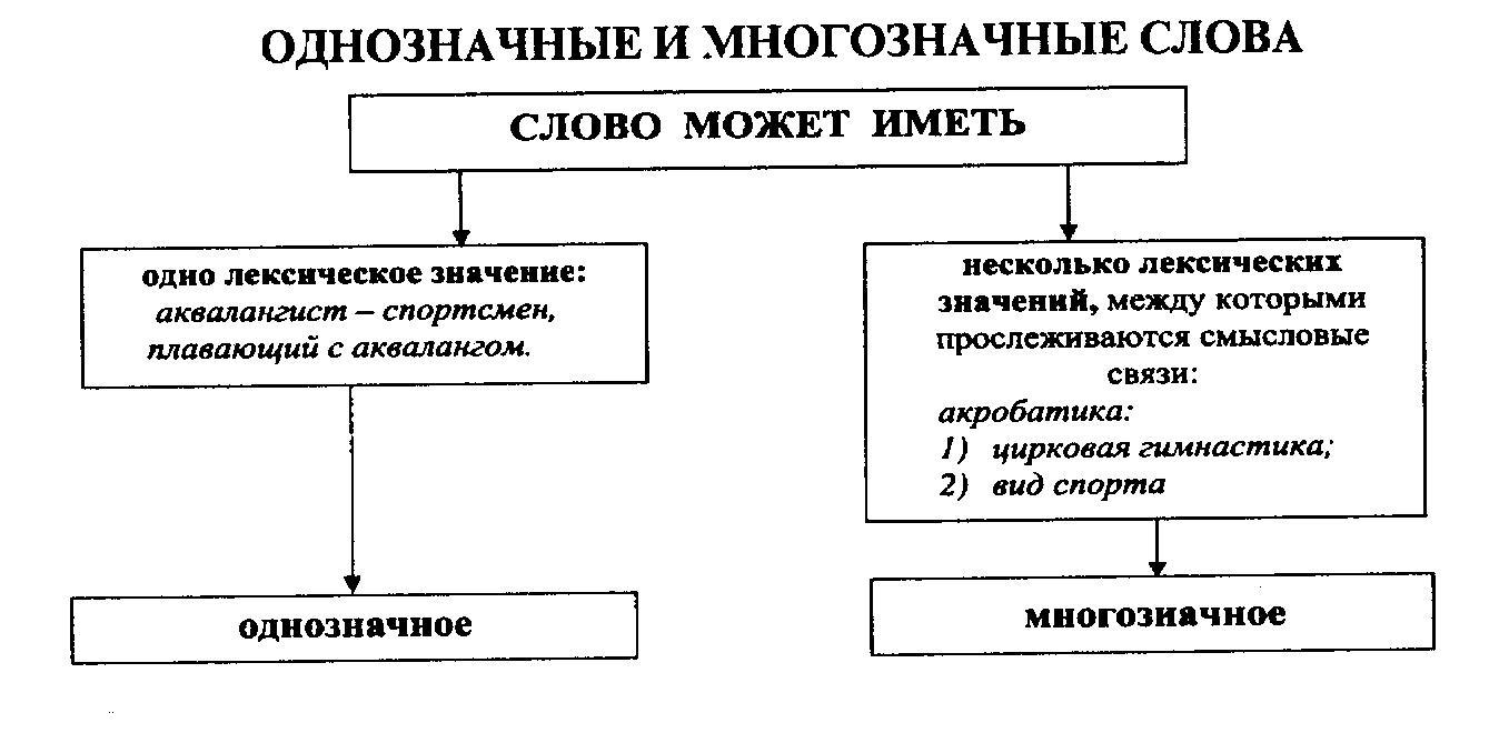 Однозначные слова – прмиеры и определение (1 класс, русский язык)