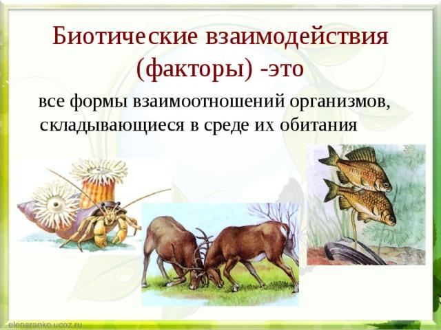 Абиотические и биотические факторы окружающей среды: примеры