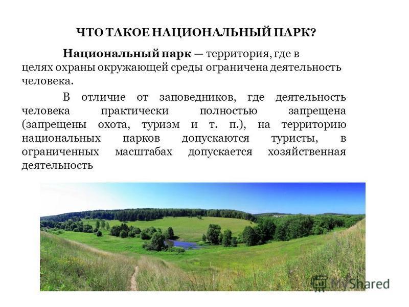 Что такое заповедник и национальные парки? общая характеристика и отличительные особенности