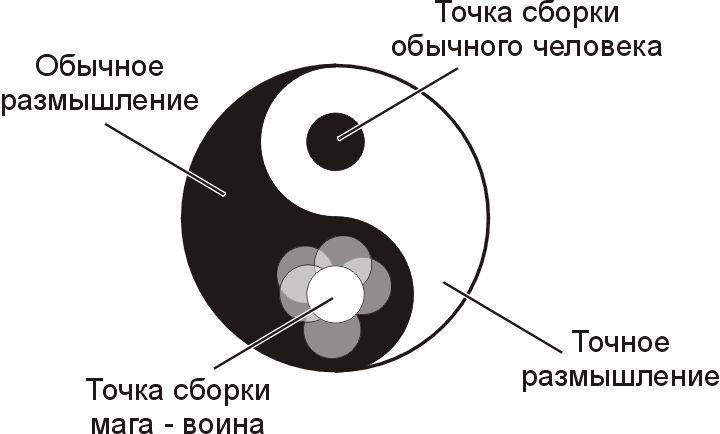 Монада человека - эволюция развития