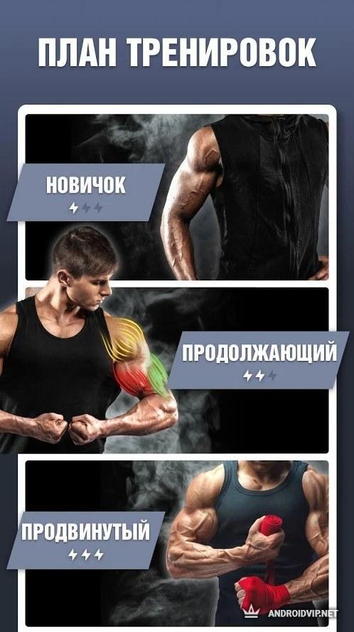 Мышцы кора что это такое?