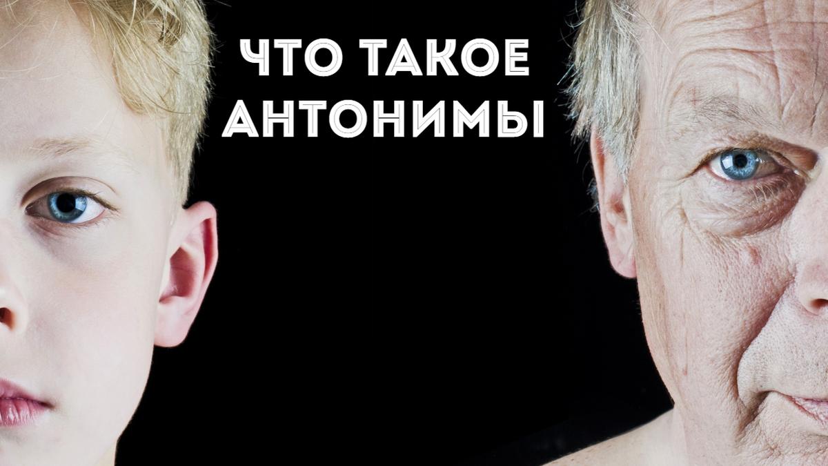Слова антонимы: примеры в русском языке контекстных и однокоренных атонимов   tvercult.ru