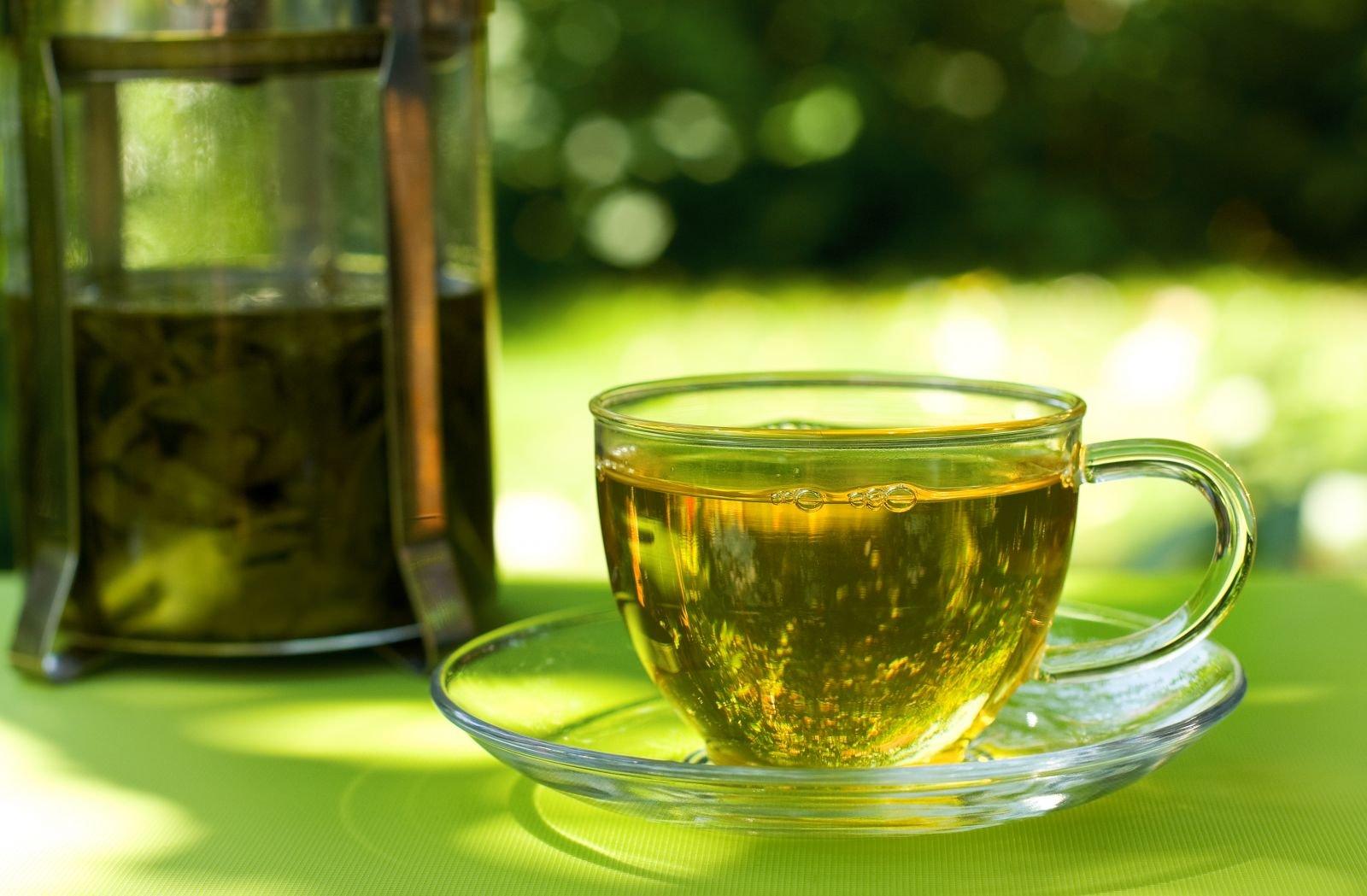 Фрукт саусеп: описание растения и его плодов, саусеп чай польза и вред применения soursop, перевод