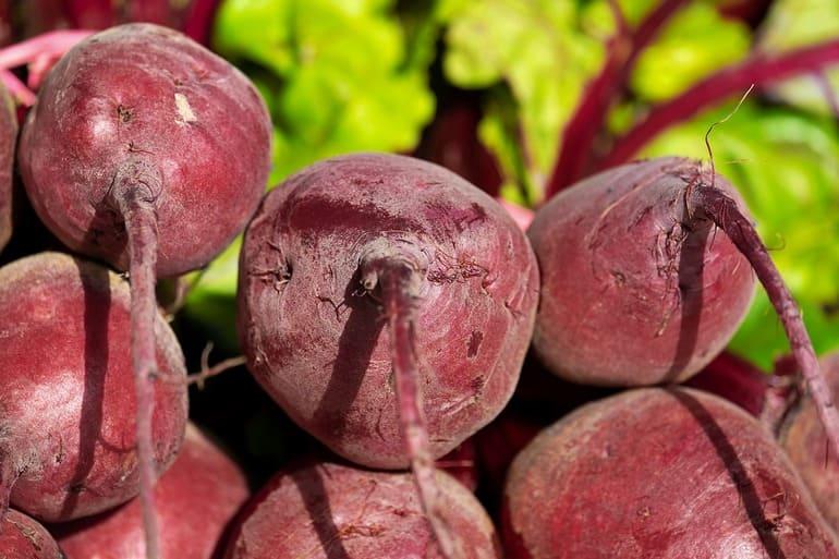 Корнеплоды , какие овощи к ним относятся