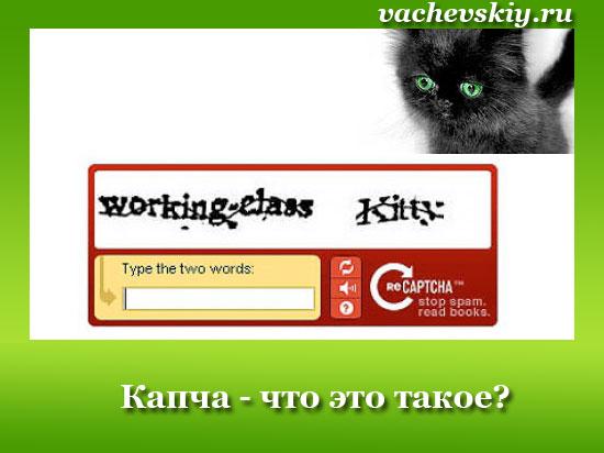 Что такое капча – recaptcha, captcha и другие виды, зачем нужна в интернете и как пройти
