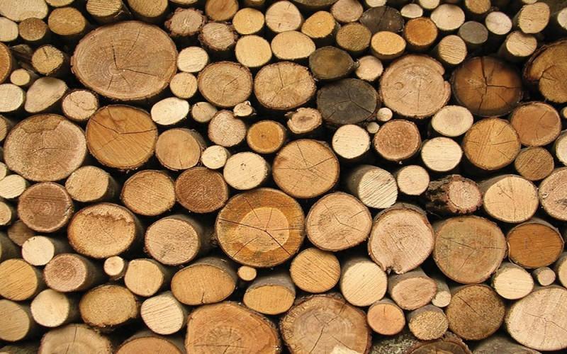 Основные древесные строительные материалы