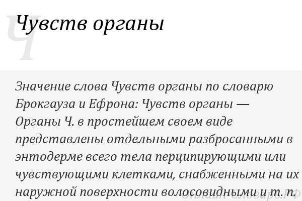 Линия — википедия. что такое линия