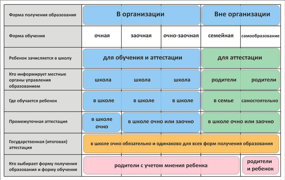 Гид по формам обучения в россии: что подойдёт вашему ребёнку