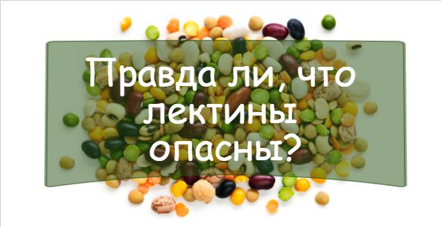 Лектины в еде – действительно ли они такие опасные?