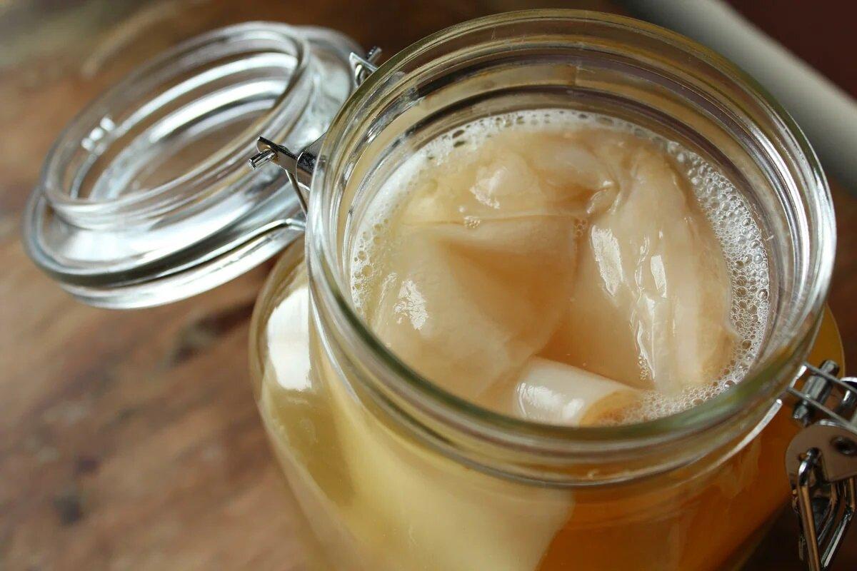 Чайный гриб(комбуча): состав, польза для здоровья, противопоказания, приготовление | народные знания от кравченко анатолия