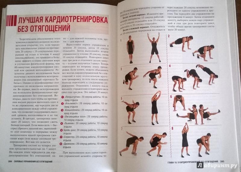 Что такое мышцы кора, плюс ежедневная тренировка (всего 4 упражнения)