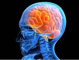 Симптомы сотрясения мозга у взрослых: как распознать признаки легкой или тяжелой головной травмы?