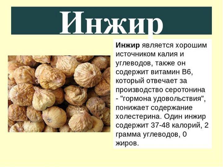 30 полезных свойств инжира: полезные свойства и противопоказания для здоровья