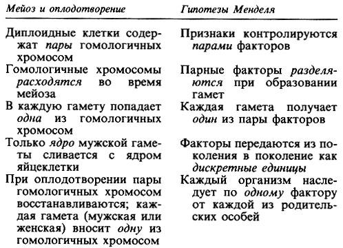 Урок по теме:сцепленное наследование. генетика пола» | контент-платформа pandia.ru