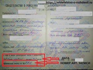 Где находиться номер актовой записи и серия свидетельства о рождении