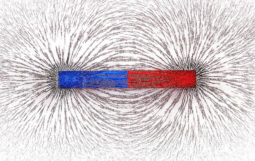 Лекция 10 постоянное и переменное магнитное поле. действие магнитных полей на биологические объекты