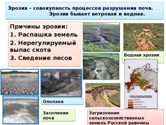 Методы защиты почвы от водной и ветровой эрозии