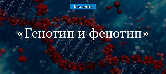 Что такое редкий фенотип крови?
