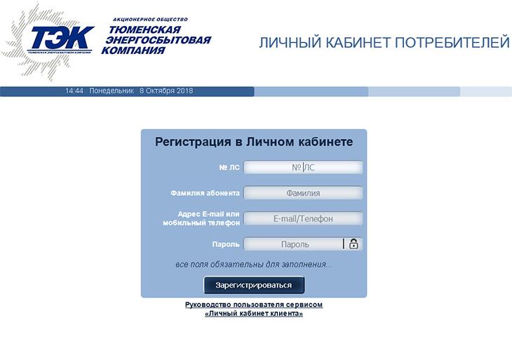Передать показания за электроэнергию, свет тэк (tmesk.ru)