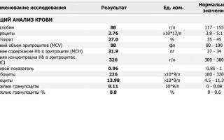 Mchc в анализе крови: что это такое, нормальные показатели