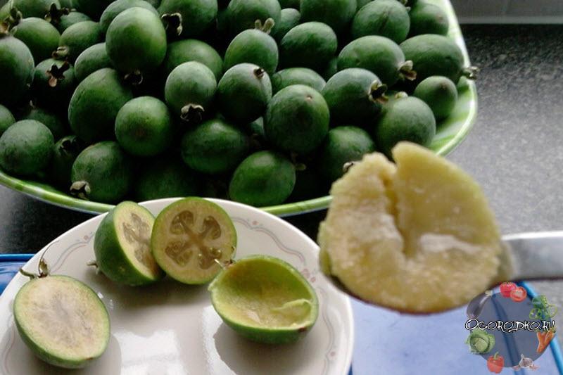 Как есть фейхоа: что приготовить из фрукта