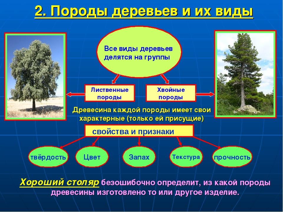 Древесина — официальная minecraft wiki